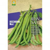 Bush Bean Maxi Seeds from organic Farming