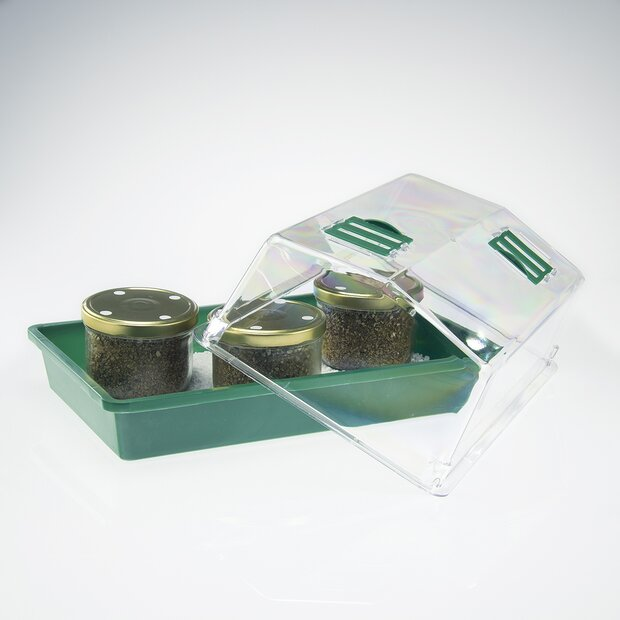 Greenhouse Mini + 3 PF Substrate jars