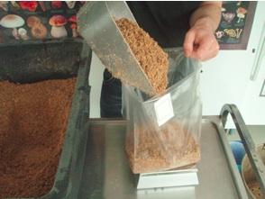 Sterilizing of wood substrates - Tyroler Glückspilze